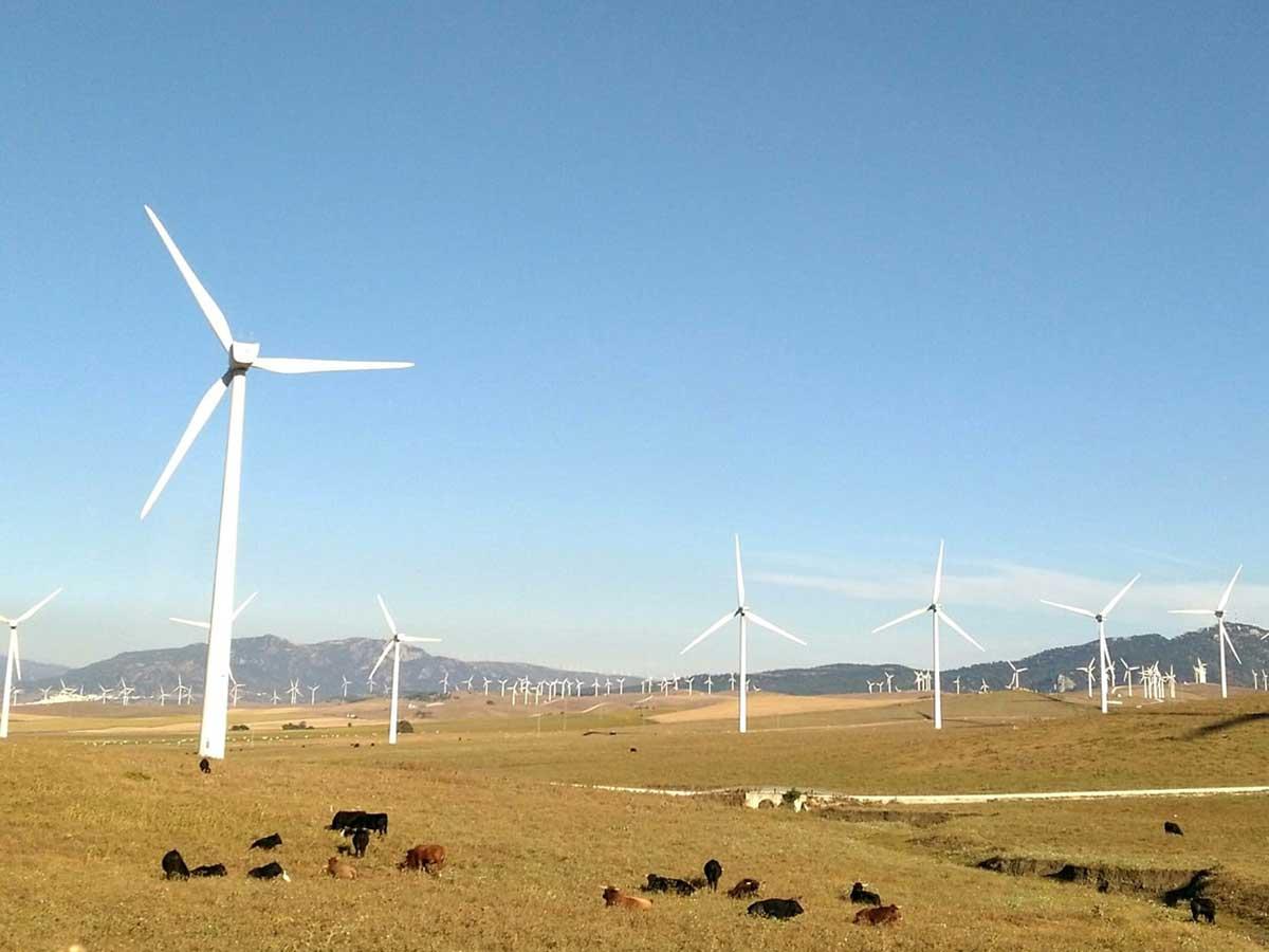 Acciona construirá un parque eólico en Australia de 1.026 MW