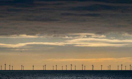 Consulta pública sobre Biogás y Energías Marinas en España