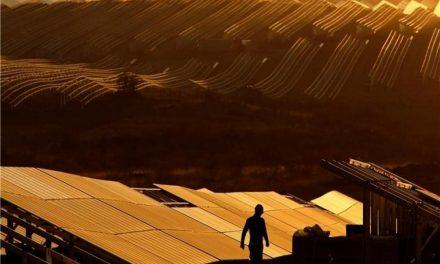 Iberdrola pone en marcha la mayor planta fotovoltaica de Europa